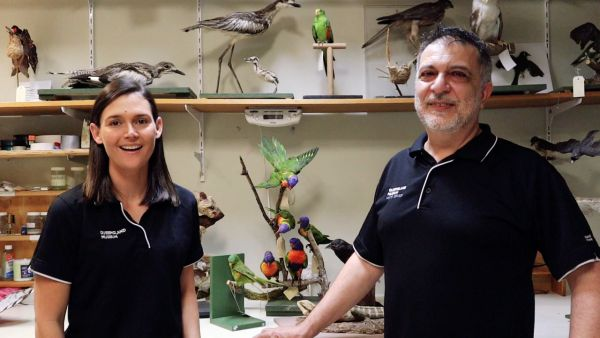 Audio and video of Little Learners | Pelican | Queensland Museum Network