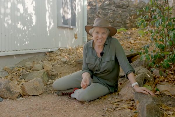 Audio and video of Museum at Home: The Backyard
